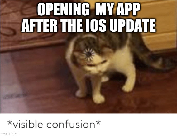 MEME: Opening my app after the iOS update, visible confusion